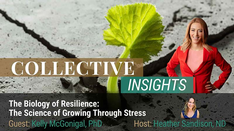 Dr. Sandison interviews Kelly McGonigal, Ph.D. on the Science Of Resilience