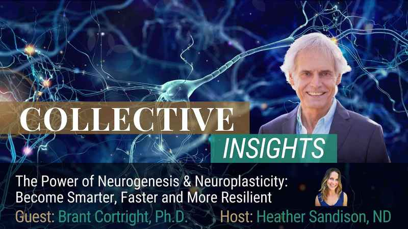 Interview: The Science of Brain Neurogenesis – Brant Cortright PhD